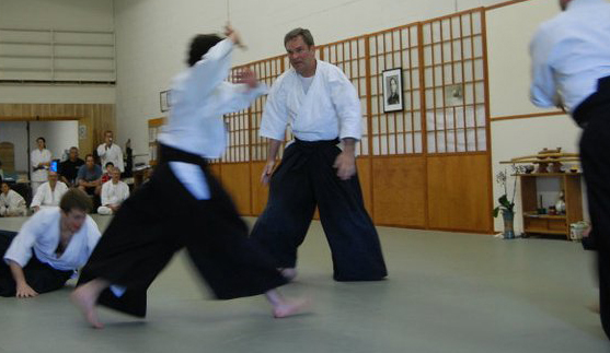 Aikido of Arlington – 2011_TaiSai_00.jpg